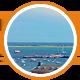 Provincetown expert badge