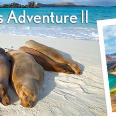 Click to see more about Amazing Galapagos II