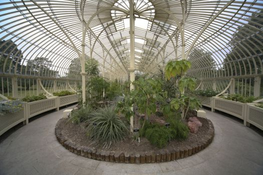 National Botanic Garden, Dublin