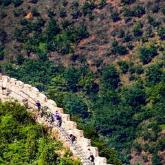 Click to see more about Huangyaguan Great Wall Marathon