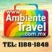Organization in Guadalajara : Ambiente Travel