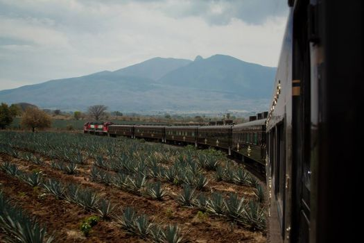 José Cuervo Express