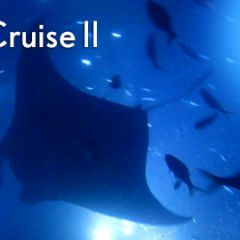 Hawaii Adventure Cruise II