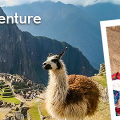 Click to see more about Machu Picchu Adventure