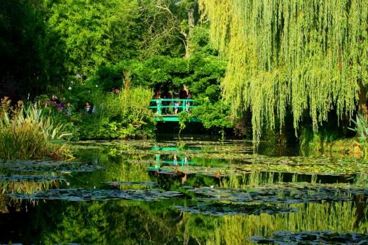 Monet's Garden (Giverny)