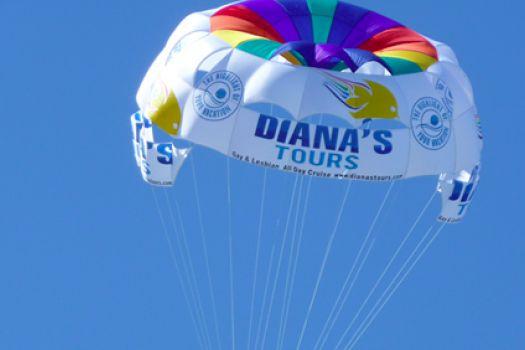Diana's Tours