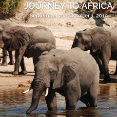 Click to see more about Journey to Africa, Miami