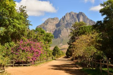 Cape Town itinerary : In Boer Country