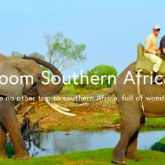 Click to see more about Zoom South Africa