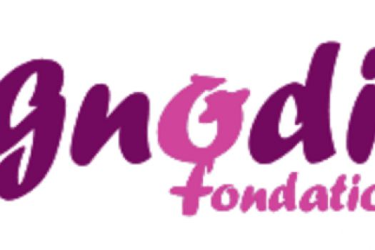 Organization in Switzerland : Agnodice