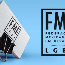 Federación Mexicana de Empresarios LGBT's profile