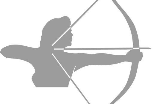 Organization in Frankfurt : Artemis Sport