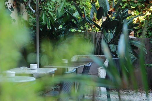 Botànic Bar Café