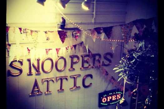 Snoopers' Attic