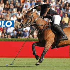 Argentine Open Polo Championship
