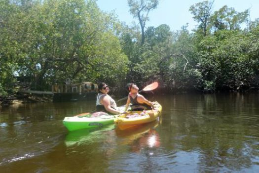 Atlantic Coast Kayak Company Eco-Tour