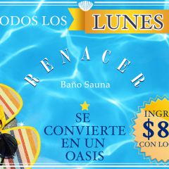 Click to see more about Lunes de Renacer Sauna