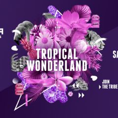 Tropical Wonderland