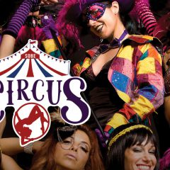 Click to see more about Friday Nights:  Sobe Circus