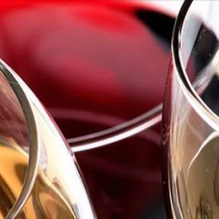 Click to see more about Vallarta Wine Fest, Puerto Vallarta