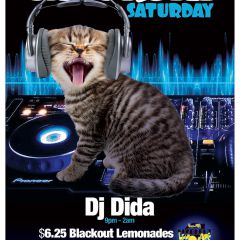 Click to see more about Caturday Saturday, San Diego