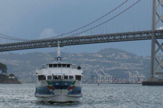 Cruise the San Francisco Bay