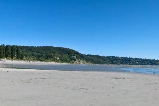 Discovery Park Beach