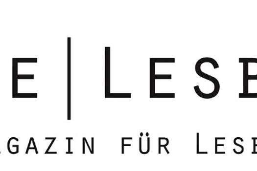 Organization in Germany : Szene Lesbe