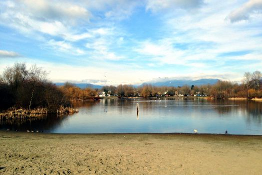 Trout Lake Beach