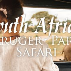 Click to see more about South Africa: Kruger Park Safari