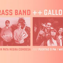 Click to see more about La Not Brass Band y Gallo Cósmico