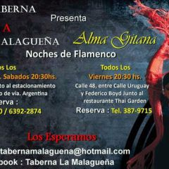 Click to see more about Noches de Flamenco, Panama City