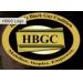 Organization in Boston : Hispanic Black Gay Coalition (HBGC)