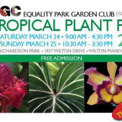 Click to see more about A Tropical Plant Fair