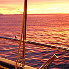 Seychelles Sailing Trip / Sea Star & Sea Bird